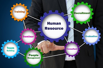 How HR Consultants can Help your Business image